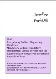 Disciplining Bodies, Diagnosing Identities; Mandatory Veiling, Mandatory Sterilisation, Sexual Torture and the Right to Bodily Integrity in the Islamic Republic of Iran