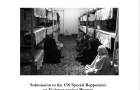 Submission to the UN Special Rapporteur  on Violence against Women