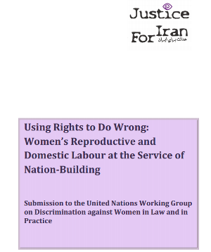 Using Rights to do Wrong: Women's Reproductive and Domestic Labour at the Service of Nation-Building, Submission to the United Nations Working Group on Discrimination against Women in Law and in Practice